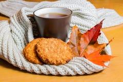 Tazza di tè e dei biscotti Immagini Stock