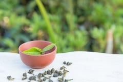 Tazza di tè e della foglia di tè sulla tavola della parete di pietra e sui precedenti delle piantagioni di tè Fotografie Stock Libere da Diritti