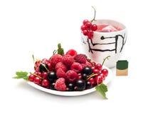 Tazza di tè e delle bacche Fotografia Stock Libera da Diritti