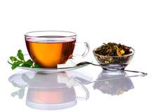 Tazza di tè ed erbe secche Fotografie Stock Libere da Diritti