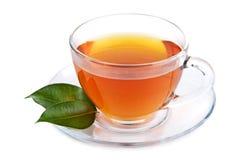 Tazza di tè isolata Fotografia Stock