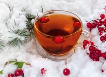 Tazza di tè nella neve Immagine Stock Libera da Diritti