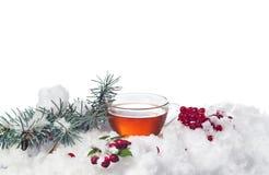 Tazza di tè nella neve su fondo bianco Immagini Stock Libere da Diritti