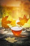Tazza di tè su un davanzale di legno della finestra con le foglie di autunno contro la finestra con le gocce di pioggia immagini stock libere da diritti