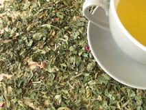 Tazza di tè sulle erbe fotografia stock