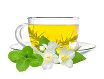 Tazza di tè verde con i fiori del gelsomino e l'erba della menta isolati sopra Immagine Stock Libera da Diritti