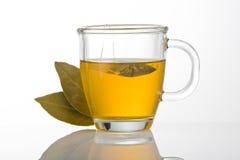 Tazza di tè verde con i fogli Fotografia Stock