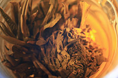 Tazza di tè verde, fondo bianco Immagini Stock