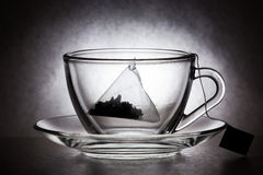 Tazza di vetro con la bustina di tè Fotografia Stock Libera da Diritti