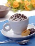 Tazza e biscotti del cioccolato. Fotografia Stock Libera da Diritti