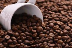 Tazza e caffè Fotografia Stock