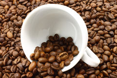Tazza e coffeebeans bianchi Fotografia Stock
