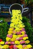 Tazza e fiori di caffè Immagini Stock