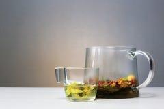Tazza e teiera sulla tavola Erbe curative Tabella bianca ethnoscience Fotografia Stock Libera da Diritti