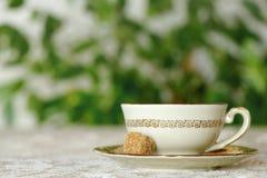 Tazza fresca di tè contro fondo verde Fotografia Stock
