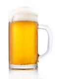 Tazza gelida di birra Immagini Stock