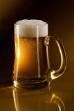 Tazza in pieno di birra fotografia stock