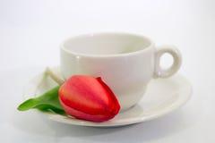 Tazza rossa di caffè e del tulipano Immagini Stock