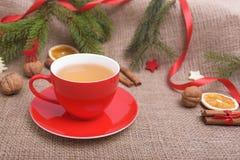 Tazza rossa nella decorazione di Natale Fotografia Stock Libera da Diritti