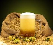 Tazza spumosa di birra Fotografia Stock