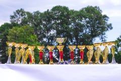 Tazze brillanti di doratura per i vincitori ricompensanti nel competitions_ immagini stock libere da diritti