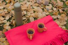 Tazze con tè e termos durante il picnic in autunno Immagine Stock