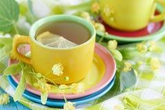 Tazze di tisana con i fiori ed il limone del tiglio Fotografia Stock Libera da Diritti