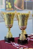 Tazze e medaglie per i vincitori del torneo di tennis Immagini Stock Libere da Diritti