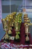 Tazze e medaglie per i vincitori del torneo di tennis Fotografie Stock