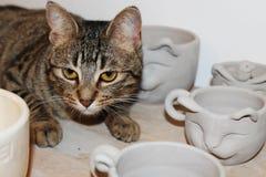 Tazze a forma di gatto con il gatto in un'officina ceramica fotografia stock