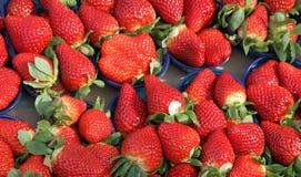 Tazze mature della fragola da vendere al mercato di verdure Fotografia Stock