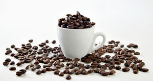 Tazzina colma di chicchi caffè 库存图片