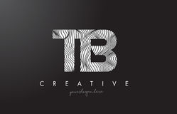 TB T B Letter Logo with Zebra Lines Texture Design Vector. Stock Image