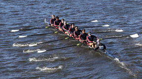 TBC Racing Crew races in the Head of Charles Regatta Men`s Youth Eights Stock Image