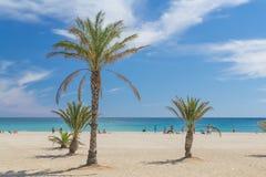 Tbe海滩在卡塔龙尼亚 免版税图库摄影