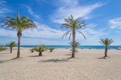 Tbe海滩在卡塔龙尼亚 免版税库存照片