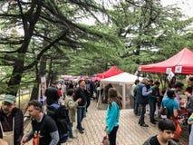 TBILISI, GEORGIA - MAY 12, 2018: Festival of Georgian wine and winemaking in Mtatsminda Park on funicular in Tbilisi, Georgia. TBILISI, GEORGIA - MAY 12, 2018 royalty free stock photos