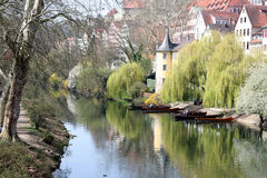 Tübingen in spring Royalty Free Stock Photography