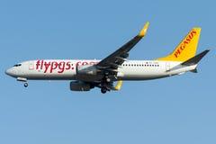 TC-CPO佩格瑟斯航空公司,波音737-800命名了HAYAL 免版税图库摄影