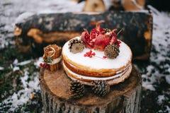 Tcake marrone fatto a mano di biscui decorato con i dolci del cono e del granate con crema fotografia stock