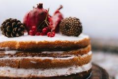 Tcake marrone fatto a mano di biscui decorato con i dolci del cono e del granate con crema immagini stock libere da diritti