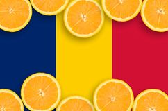 Tchad flagga i citrusfruktskivahorisontalram royaltyfri foto