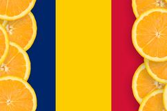 Tchad flagga i vertikal ram för citrusfruktskivor royaltyfri fotografi