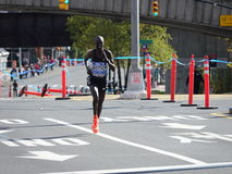 2016 TCS纽约马拉松185 库存照片