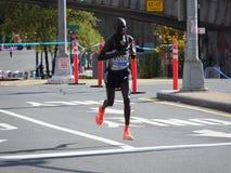 2016 TCS Miasto Nowy Jork maraton 160 Obraz Royalty Free