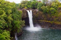 Tęcza Spada w tropikalny las deszczowy na Hawaje, Duża wyspa, usa Fotografia Stock