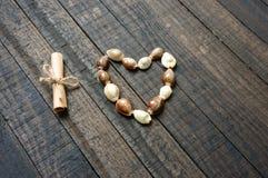 Te amo, cáscara, forma del corazón, día de San Valentín Fotos de archivo