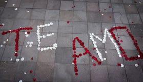 Te Amo Spanish för I-förälskelse som du stavade ut i rosa kronblad fotografering för bildbyråer