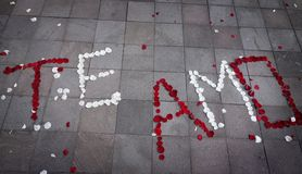 Te Amo Spanish for I Love You spelled out in rose petals stock image