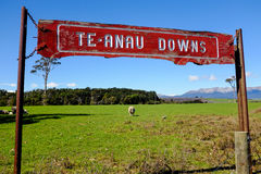 Te Anau Downs, Nuova Zelanda Immagine Stock Libera da Diritti